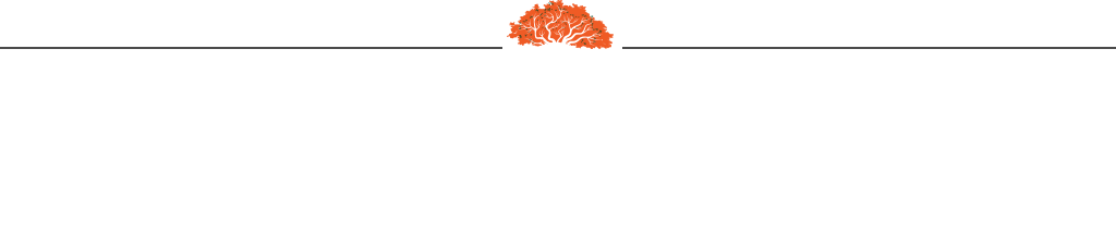 pal-campo-restaurant-slide-footer
